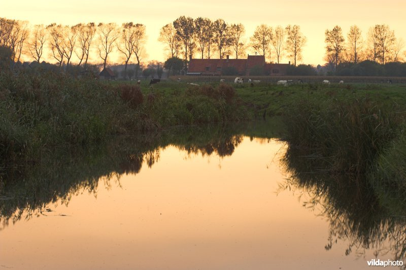 Natuurreservaat Stadswallen van Damme